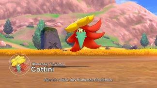 Pokémon Direct vom 05.06.2019