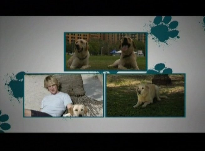 Animal Adoption - OV-Featurette Poster