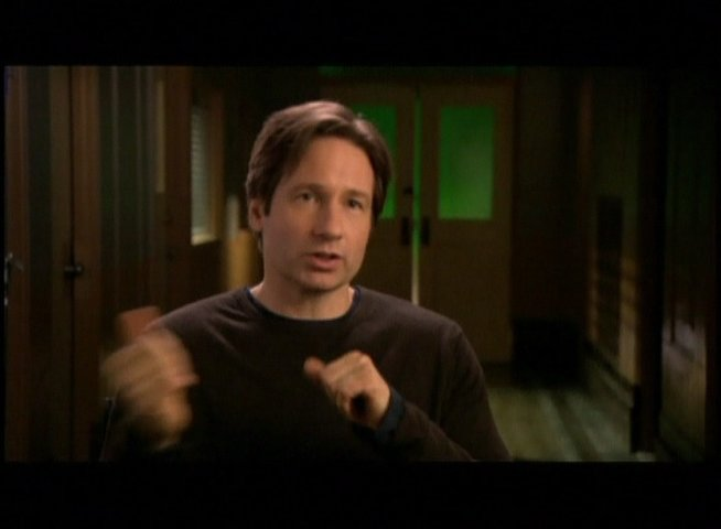 Interview mit David Duchovny (Fox Mulder) - OV-Interview Poster