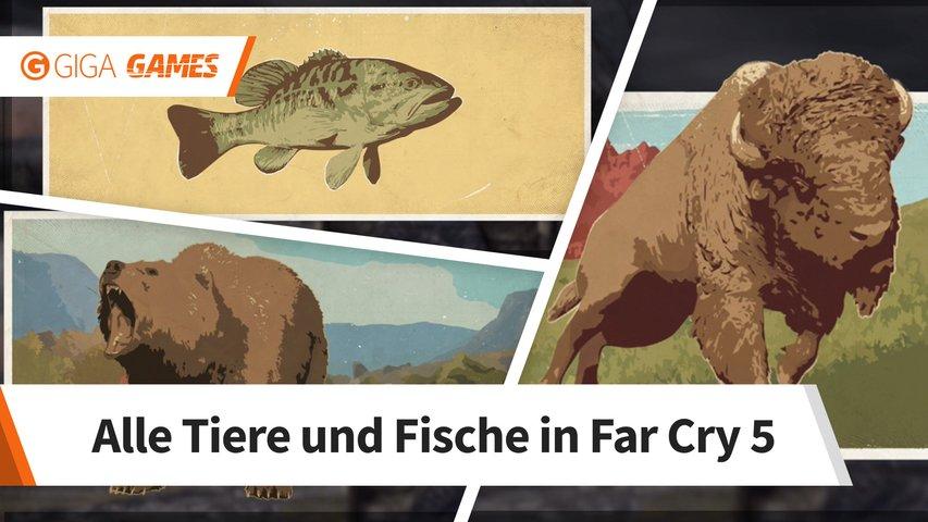 Akustische Wolfsköder Far Cry 5 Karte.Far Cry 5 Alle Wolfsköder Fundorte Für Ruf Der Wildnis